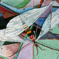 Insects with Stained Glass - 2003 - Watercolor.